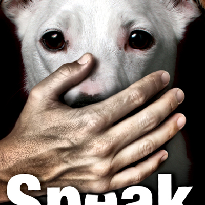 Speak Out - non for profit animal cruelty campaign feature image